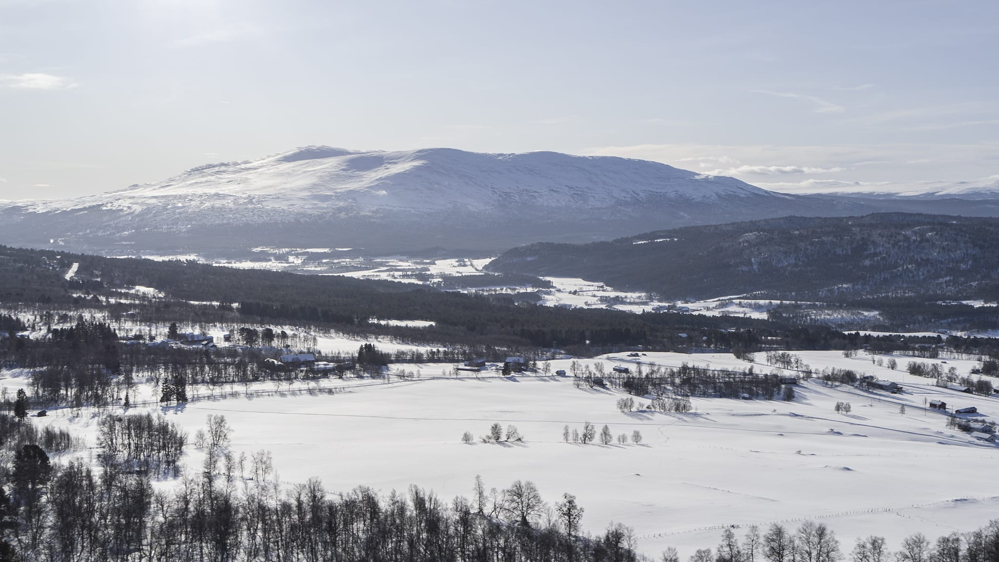Dalsbygda. Foto: Ren Røros Frontal