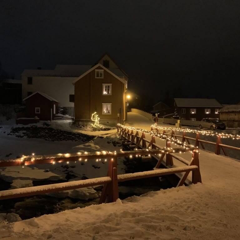 Raubrua på Røros. Foto: Ren Røros Frontal.